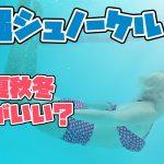 沖縄でシュノーケリングするなら時期はいつ?春夏秋冬のメリットデメリット紹介